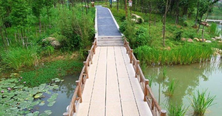 湿地花境设计_湿地公园设计_湿地体验区设计意义